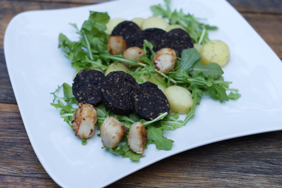 Scallops and Black Pudding Recipe